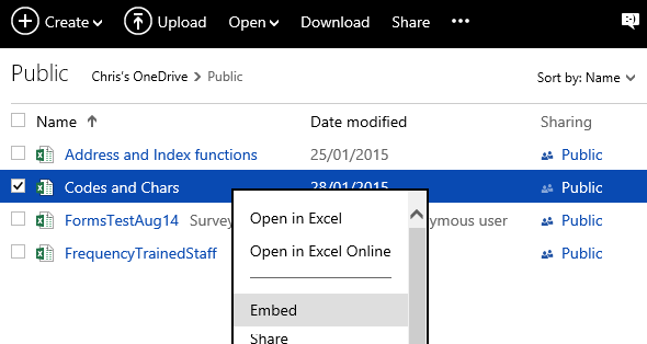 embed an excel file in a web page